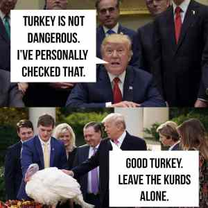 Good turkey