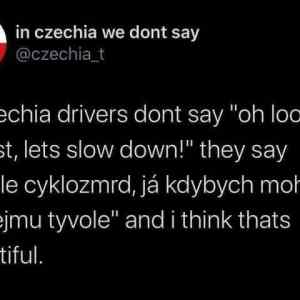 In czechia